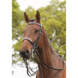 Kincade Show Weymouth Double Bridle