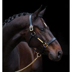 Horseware Amigo Padded Headcollar