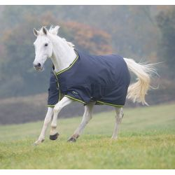 Shires Tempest Original 200 Turnout Rug