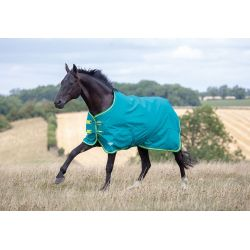 Shires Tempest Original 50 Turnout Rug Green Lime