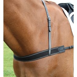 Shires Blenheim Elastic Breastgirth