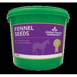 Global Herbs Fennel