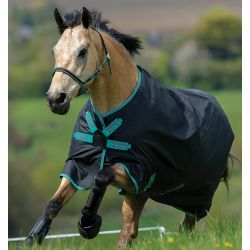 Horseware Amigo Hero ACY Lite With Disc Closure Turnout Rug