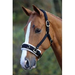 Shires Fleece Lined Lunge Cavesson
