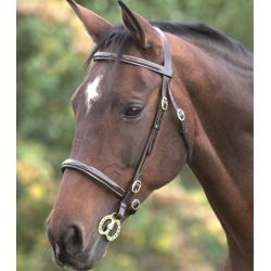 Shires Blenheim Fancy Stitched In Hand Bridle