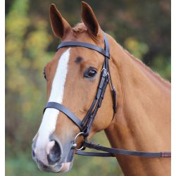 Shires Aviemore Plain Bridle