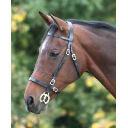 Shires Blenheim Plain In Hand Bridle
