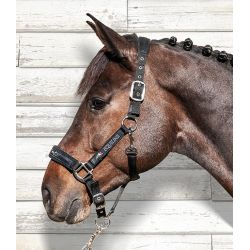 Equiline Halter And Lead Rope