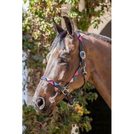 Tagg Loveson Headcollar size Pony