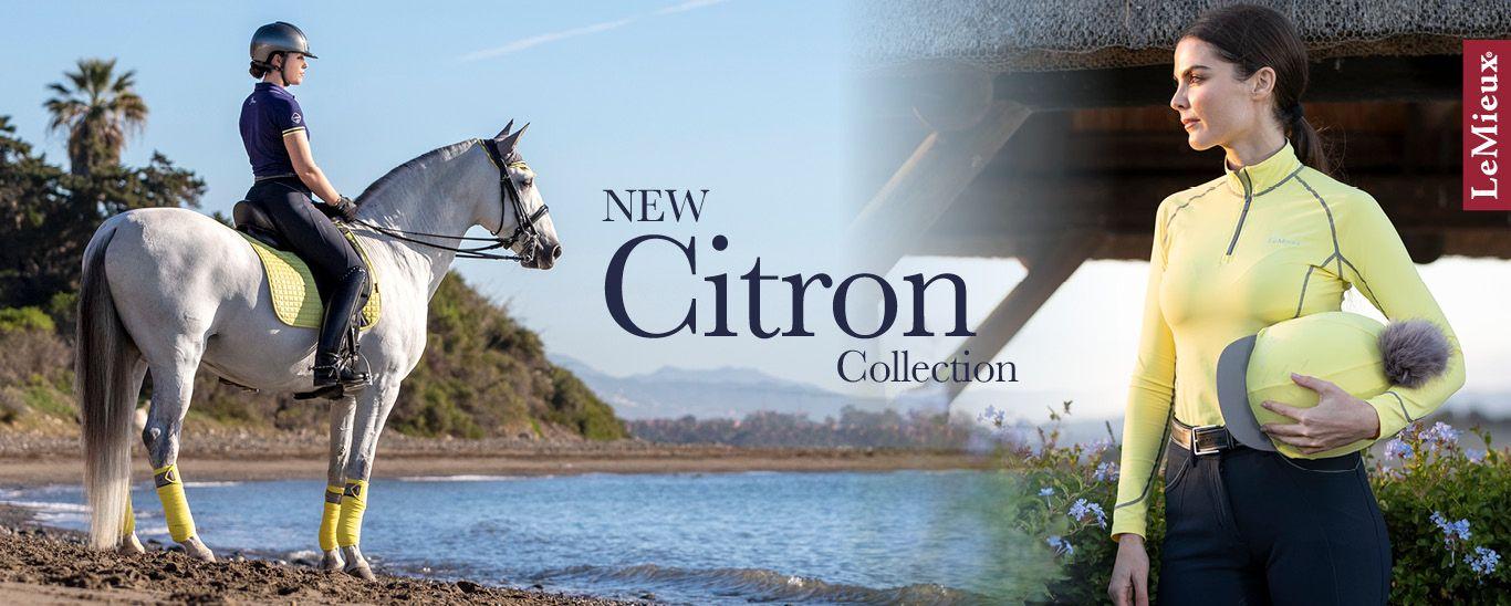 LeMieux Citron Collection