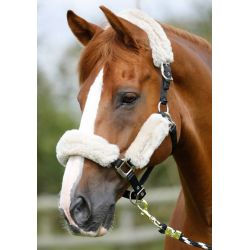 Premier Equine Merino Wool Set For Headcollar