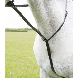 Shires Blenheim Standing Martingale