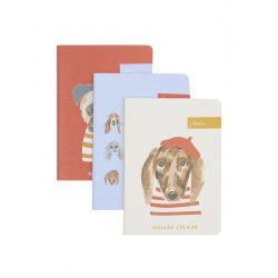 Joules Set Of Three Notebooks A6 Blue Dog Multi