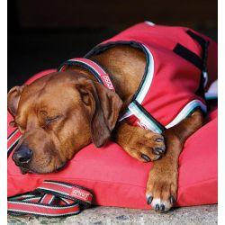 Horseware Amigo Waterproof Dog Rug 100g Red