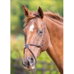 Shires Blenheim Mexican Noseband