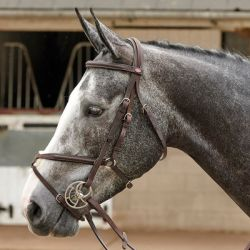 John Whitaker Ready To Ride Mexican Bridle BR055