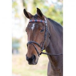 Shires Blenheim Leather Polo Browband Red Navy