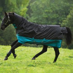Horseware Mio One Piece 200g Self Bound Turnout Rug Black Turquoise