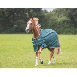 Shires Typhoon Lite Turnout Rug Green