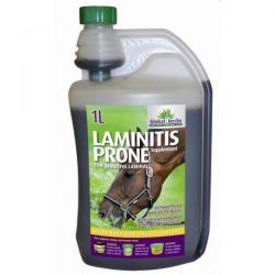 Global Herbs Laminitis Prone Liquid