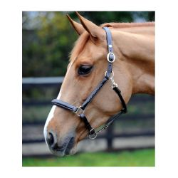 John Whitaker Fancy Stitched Leather Headcollar HC052